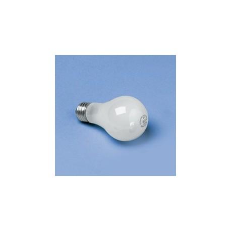 Incandescent Light Bulbs, 60 Watt
