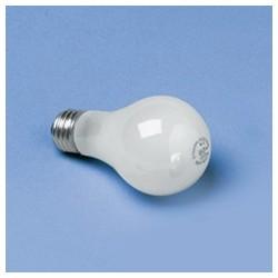 Incandescent Light Bulbs, 75 Watt