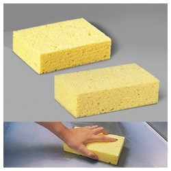Beige Cellulose Sponge. Medium