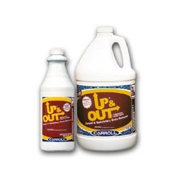 Carpet & Upholstery Stain Remover, Quarts