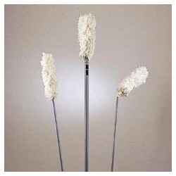 Hi-Duster Antimicrobial Overhead Duster, 102""